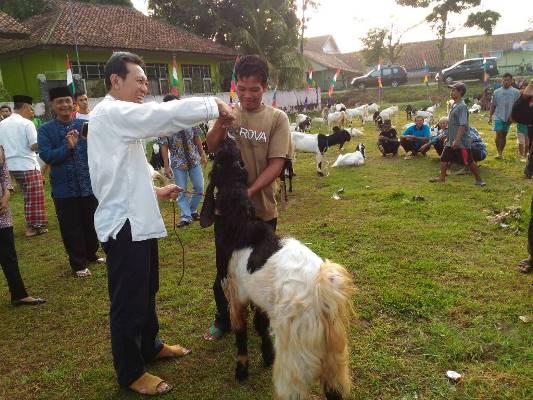 Pasca safari shubuh berjamaah, Bupati Kebumen menyerahkan 61 ekorkambing Jawa Randu pada warga miskin di Desa Bocor