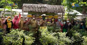 Distapang Lakukan Penilaian Lomba P2L Tingkat Kabupaten Kebumen di Kelurahan Panjatan